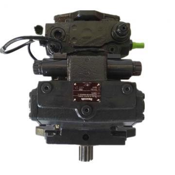 Vickers PV046R1K1JHNMFW+PV020R1L1T1NMF Piston Pump PV Series